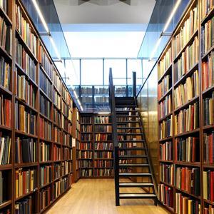 Библиотеки Рославля